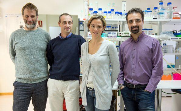 Grupo de investigadores del laboratorio de Neuroprotección Molecular del Hospital Nacional de Parapléjicos de Toledo (Foto: Carlos Monroy//SESCAM)