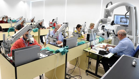 curso de microcirugía 2