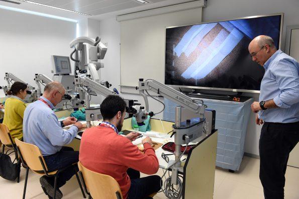 curso de microcirugía 3