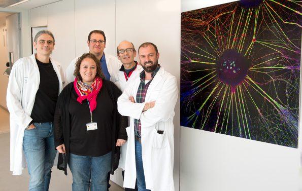 Gupo Premio NeuroArt 2018