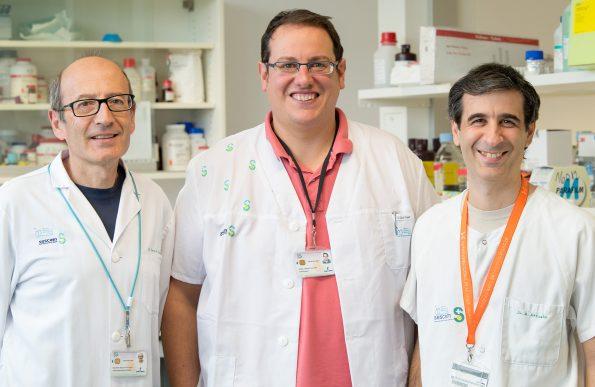 Eduardo Molina,Daniel García Ovejero y Ángel Arévalo