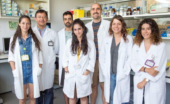 Grupo de Investigación Reparación Neural y Biomateriales del Hospital Nacional de Parapléjicos. Foto: Carlos Monroy // SESCAM