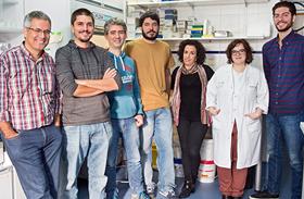 HNP y la Universidad de Valladolid desarrollarán tecnología basada en biomateriales para la lesión medular