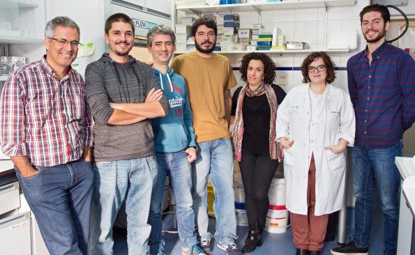 Grupo de invetigación de Neurología Molecular del Hospital Nacional de Parapléjicos. (Foto: Carlos Monroy // SESCAM)
