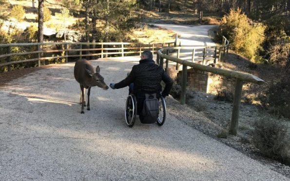 La accesibilidad es cosa de todos. Descubre las posibilidades de viajar en silla