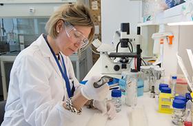 El grupo de investigación Neurometabolismo del Hospital Nacional de Parapléjicos sigue aportando luz a la investigación de la ELA