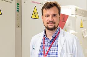 Investigación traslacional en úlceras por presión